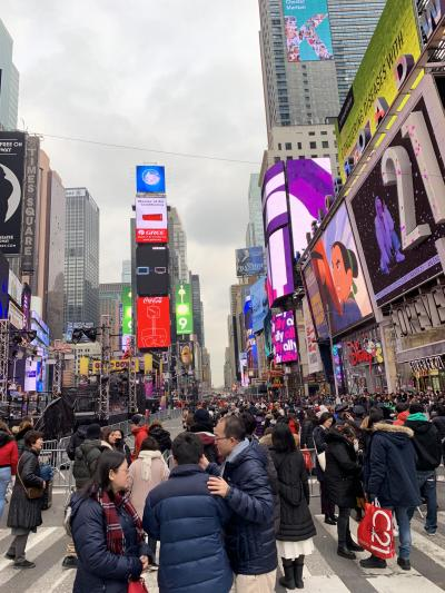 2018_ニューヨーク(2回目)_年末年始の旅 (3日目)