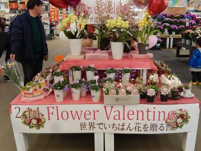 フラワーバレンタインの飾りつけを見る