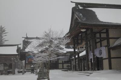 2019年冬、石鎚神社成就社、雪中散歩