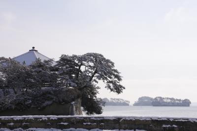 仙台から雪の松島へ