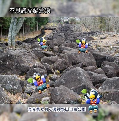 チョトそこまでの旅(2019年 神野山ハイキング)