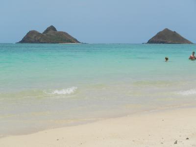 今回のハワイはオアフ島 (後半)ラニカイビーチ~ワイキキぶらり
