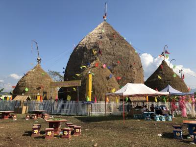 ラオス再訪の旅③:Great Rice Stack Festival、本当にぐれいとの巻