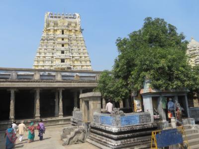 インド 「行った所・見た所」 カーンチープラムのエーカンバラナータル寺院観光
