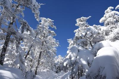 北横岳~三つ岳周回 気まぐれ天気も楽しめました