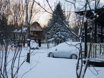 今月二度目の冬ごもり@スウィートグラス