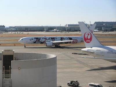 2019.01【赤組×青組】JAL初回搭乗マイルGET!ホテルはANA系・沖縄2泊3日!!
