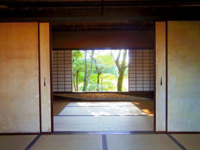 京都東京熊本大阪旅