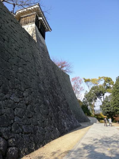 松山城を訪れる