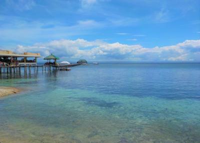 マクタン島(CEBU)リゾート満喫♪5日間「ぼっち旅…」 ~フィリピン航空・Jparkホテルライフ・スーパーetc… その①~