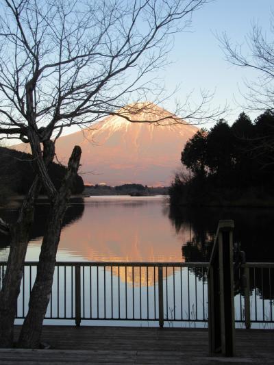 富士山見て歩き(静岡県側から)