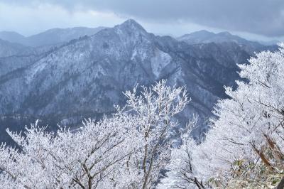 御在所岳の冬の華♪ 強風の中きらめく樹氷を撮る♪