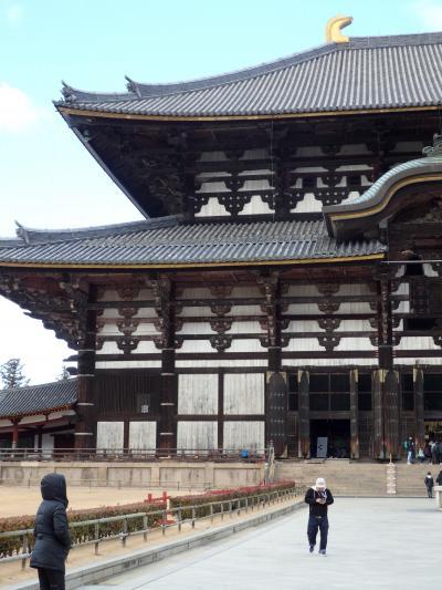 奈良・京都 飛行機&バスツア~ 東大寺・大仏殿はでっかいどー編