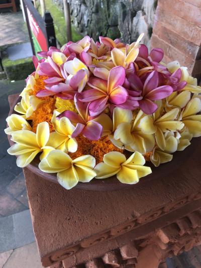 バリ島のんびり旅行
