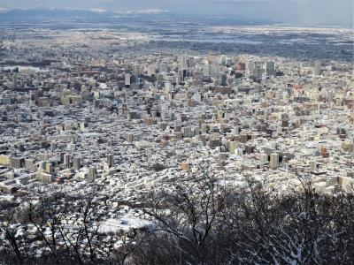 晴天の冬の藻岩山(札幌)の頂上で撮影
