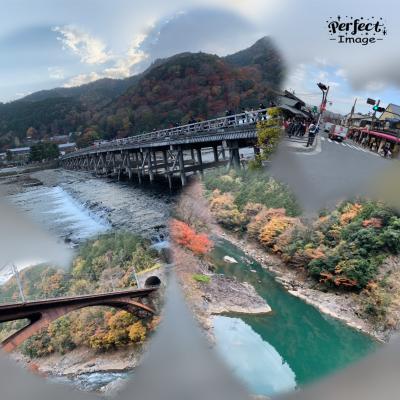 嵯峨野トロッコ電車と京都迎賓館夜間公開