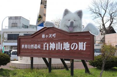 2019GW 青森県鰺ヶ沢の旅(1日目/わさおに会えた)