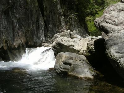 5月の三段峡(正面口~出合橋)