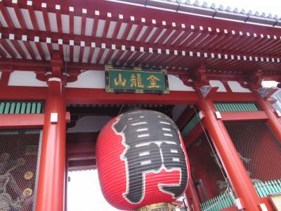 久しぶりの東京!お上りさんには、不便すぎる、これが都会だったっけ?(2)