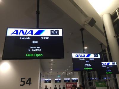 シニアの母と行くオーストラリア8日間 8日目