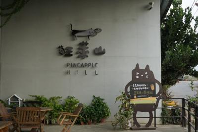 小5男子と行く台湾南部旅行記②・関子嶺温泉・嘉義・民雄