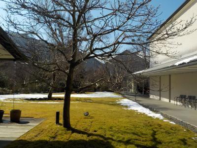施設暮らしの義母を連れ、箱根へ。仙石原から大涌谷へ。その1