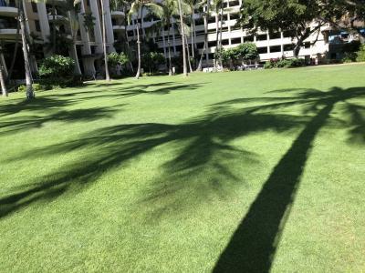 ハワイ カカアコのセレブパーティ。こんな所に?ホノルルの名刹でのイベント。大好きなラニカイビーチ。