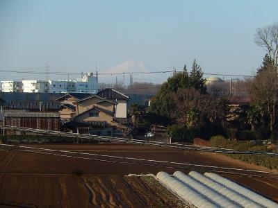 2月3日の富士山