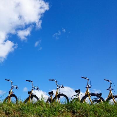 幸せの黄色い自転車、スコーネ地方とコペンハーゲンの旅②