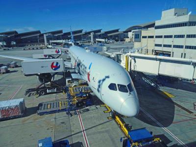ロサンゼルスLAXからAA便で帰国