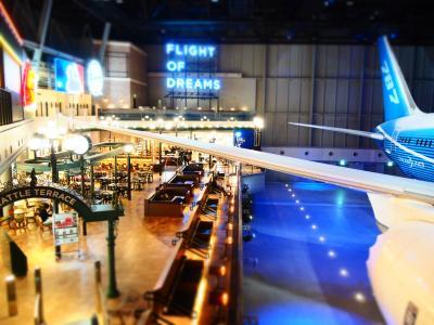 ~☆・:.,;*セントレア中部国際空港・FLIGHT OF DREAMS(セントレアホテル)沖縄旅行前泊・冬~☆・:.,;*
