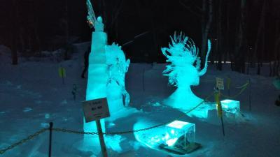 元旦に来たばかりだけど、又日光湯元温泉に雪まつり①
