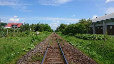 2018夏 北海道4泊◆ひとり旅◆列車・自転車・徒歩で富良野&美瑛をスローに楽しむ
