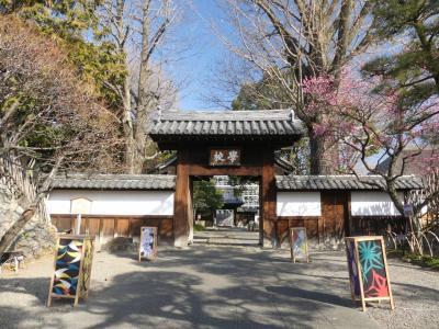 「足利学校」と「鑁阿寺」のウメ_2019_咲き始めています。(栃木県・足利市)