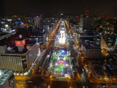 札幌へ日帰り旅行!のはすが1泊2日に変更!2月の札幌は雪祭り&イルミネーションでキラッキラ~☆☆