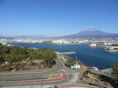 田子の浦から富士山を望む