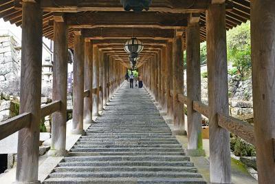 秋の彼岸の頃の京都・奈良(2)-長谷寺(奈良)ー