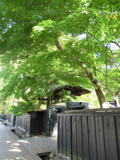 秋の東北周遊(6)角館の武家屋敷