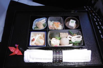 日本航空(JAL)ビジネスクラス搭乗記(シンガポール→成田)深夜便はNo Thank you!帰路も昼間のフライトで優雅なビジネスクラスを!