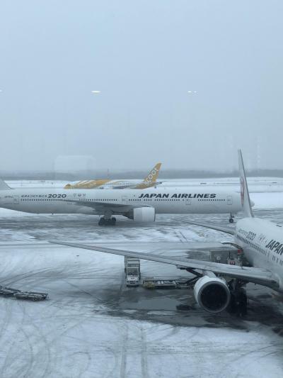 aviosマイル!JALで行く第70回札幌雪祭り2人旅2019