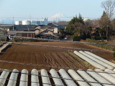 2月8日に見られた富士山