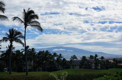 2019ハワイアン航空でハワイ島と思い出のオアフ島へ♪④ハワイ島最終日そしてオアフ島へ