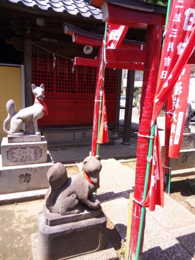 狛狐、龍の鳥居も!お稲荷さん巡り in 高円寺・阿佐ヶ谷・永福町