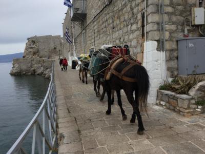 ツアーで知り合った人と2年ぶりにギリシャへ(イドラ島-Cruise)