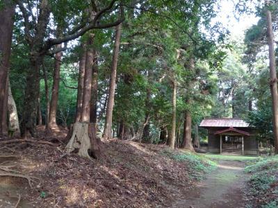 七十路夫婦 ヤマトタケルを旅する 日本書紀編その十一、北総・老尾神社、飯岡玉崎神社