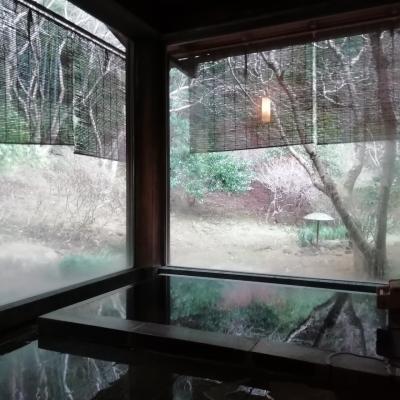 広大な日本庭園の別棟式源泉かけ流し風呂付宿