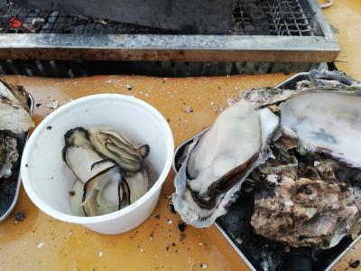 広島の牡蠣は最高!食べに行くべき!