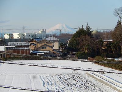 2月10日に見られた素晴らしい富士山