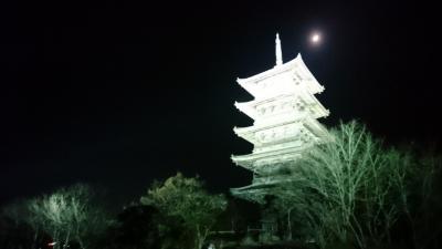 岡山☆備中国分寺のライトアップ