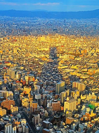 大阪-5 あべのハルカス ハルカス300(展望台)で ☆日本一の高さ300m/60階の夕景